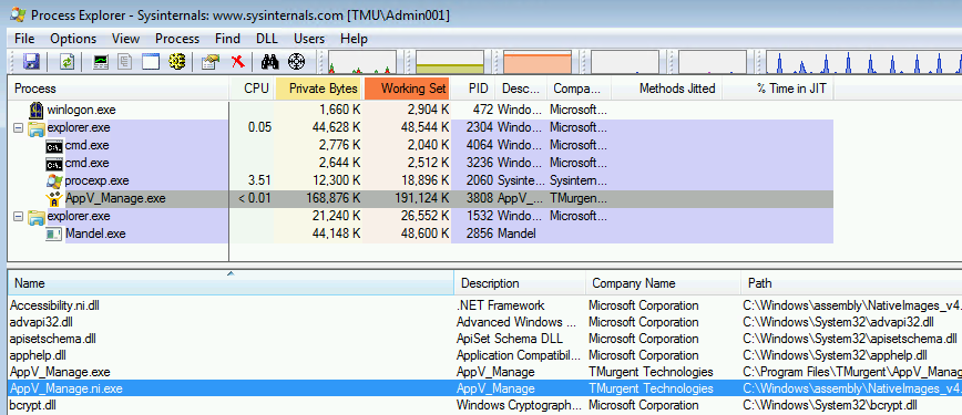 Process Explorer showing a process using a Native Image